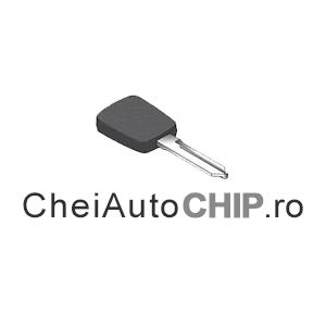 Cheii_auto_CHIP_4oox4oo_1a